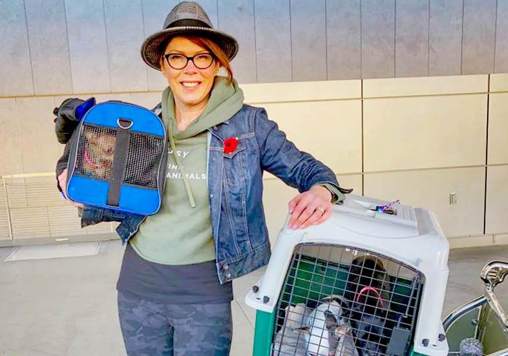 destination wedding specialist and dog rescuer